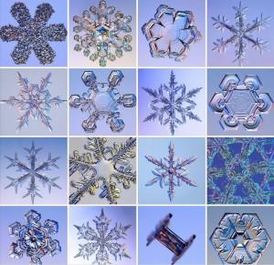 Sneeuwvlokken 16